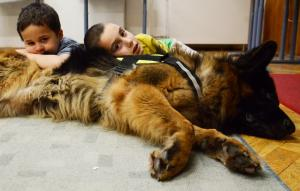 Kutyaterapia